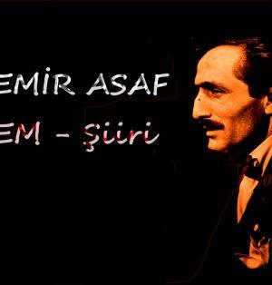 Özdemir ASAF - Özlem Şiiri