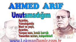 AHMED ARİF Unutamadığım Şiir Sözleri