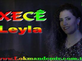 Xece Leyla Şarkı Sözleri