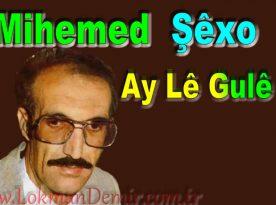 Mihemed Şêxo Ay Lê Gulê Şarkı Sözleri
